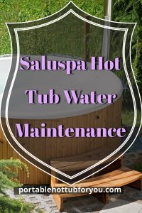 Saluspa Hot Tub Water Maintenance